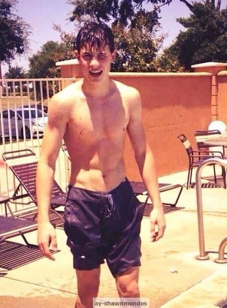 Shawn Mendes Shirtless image