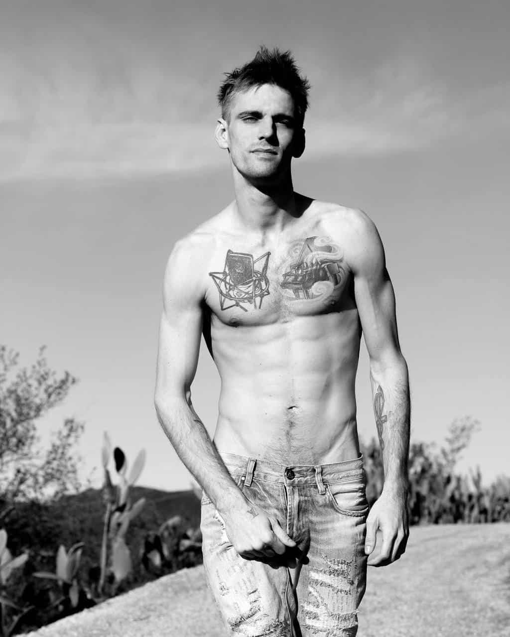 Aaron carter nude fakes useful
